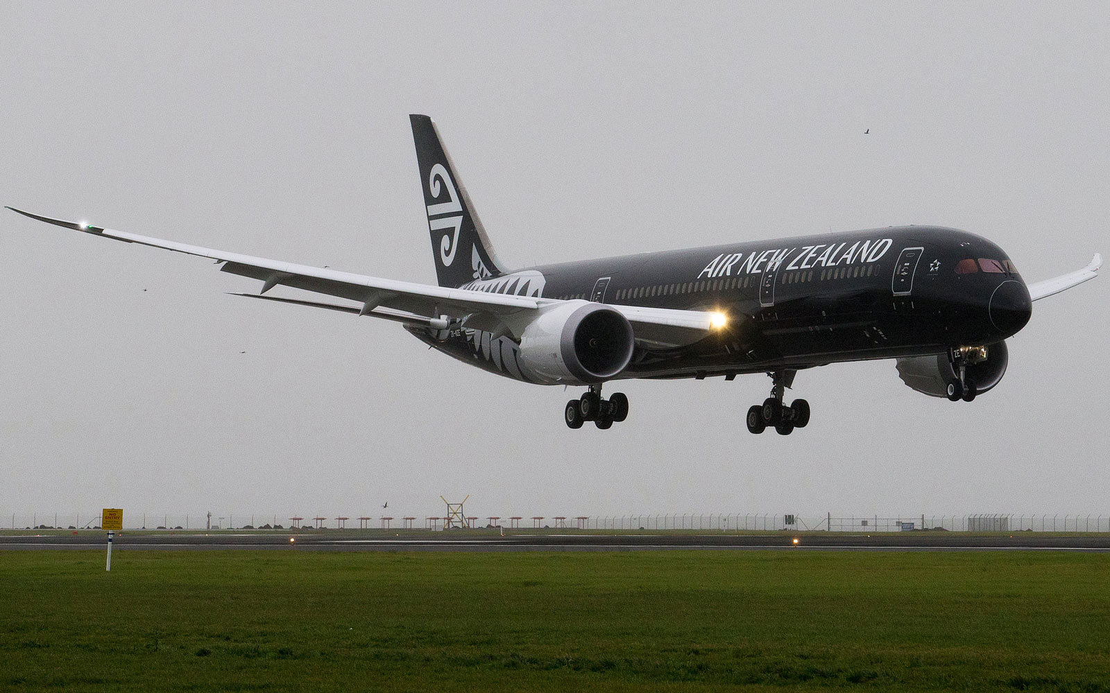An Air New Zealand plane comes in to land.