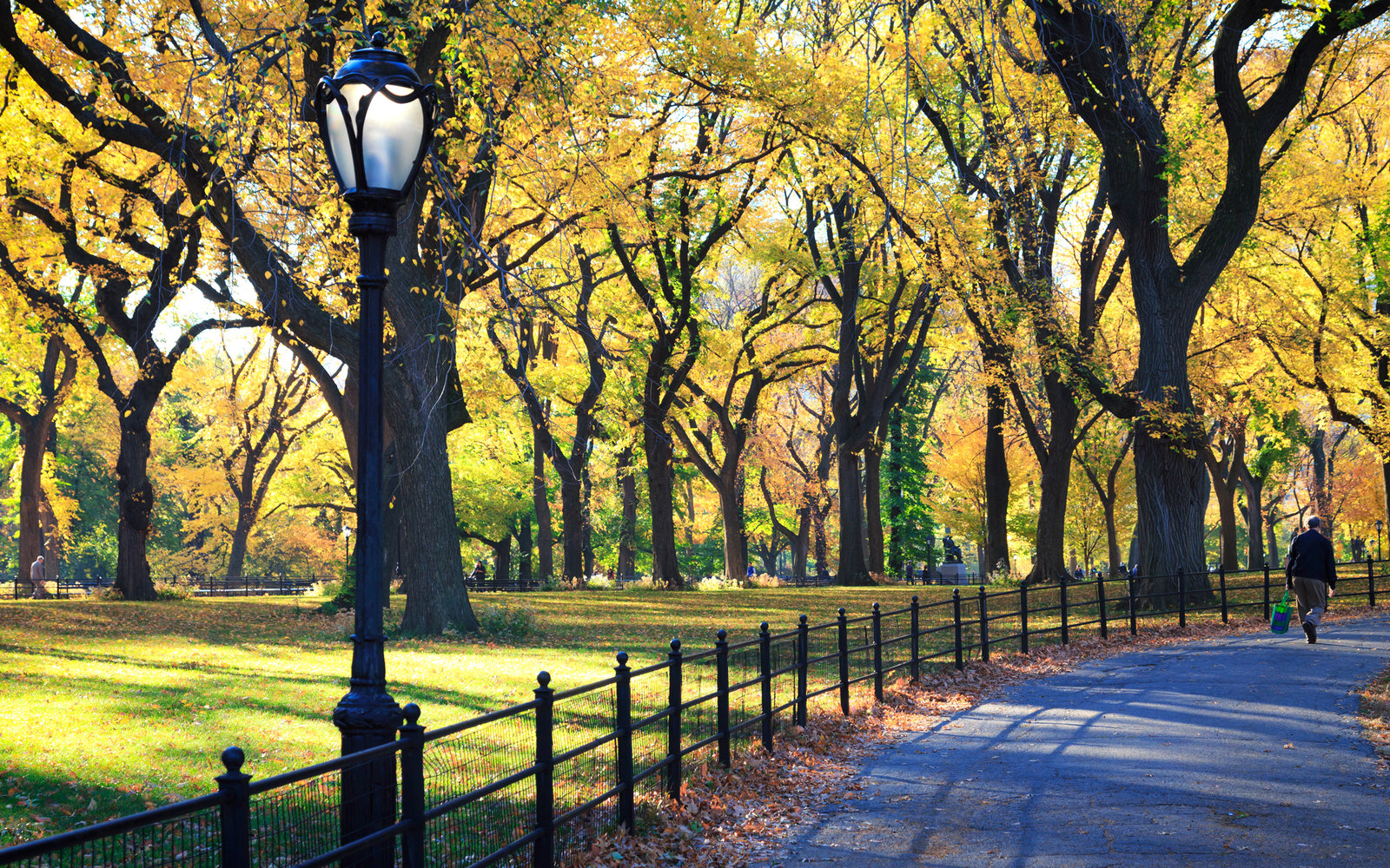 The One Trick You Need to Know Before Visiting Central Park