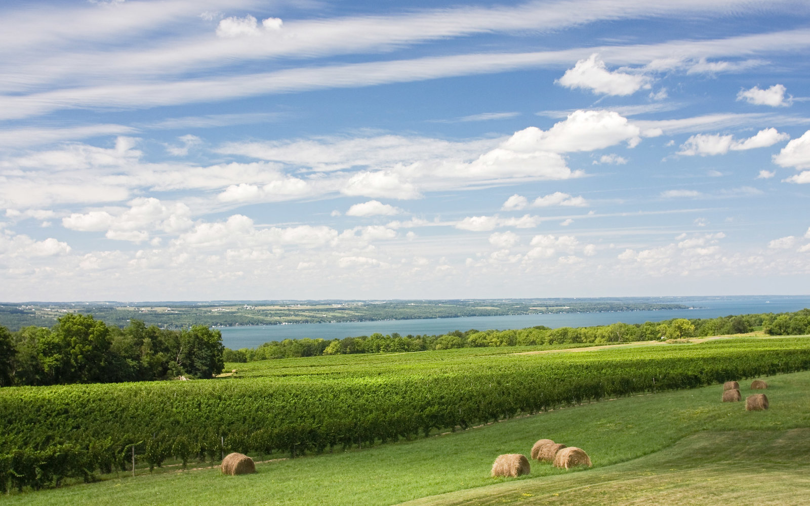 Three Day Weekend in Finger Lakes, NY