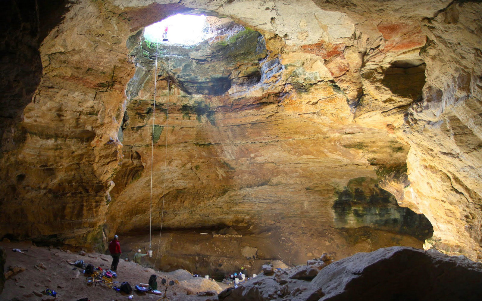 animals have been falling in this wyoming cave for 38 000 years