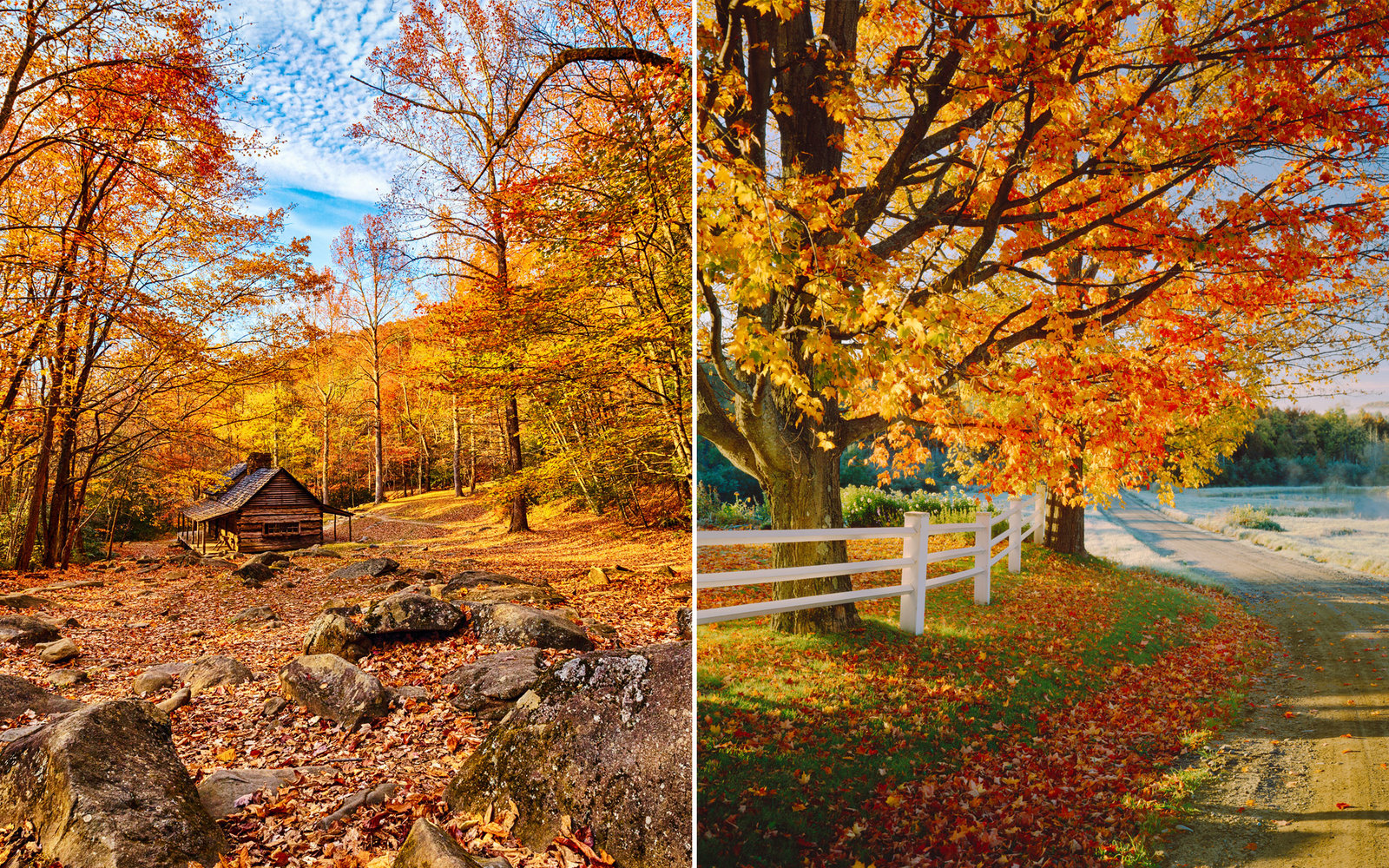 The Only Map You Need To Plan A Perfect Fall Foliage Trip Travel Leisure
