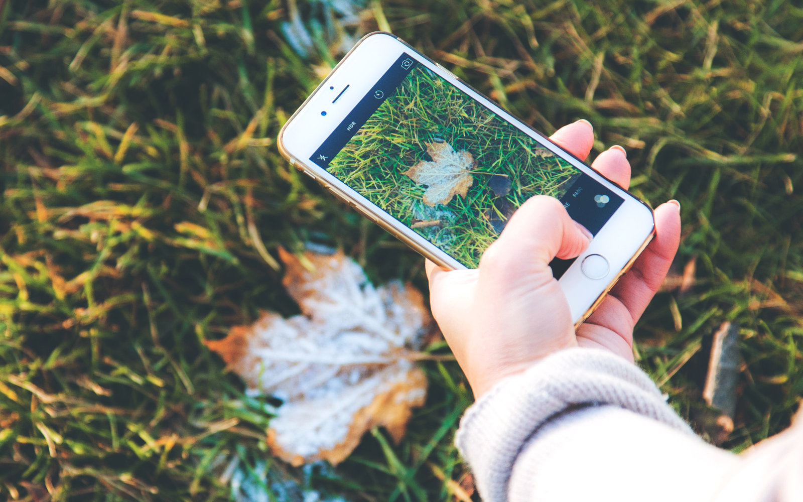 best apps for organizing travel information | travel + leisure