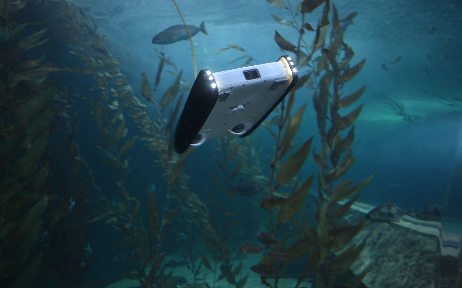 Affordable Underwater Drone