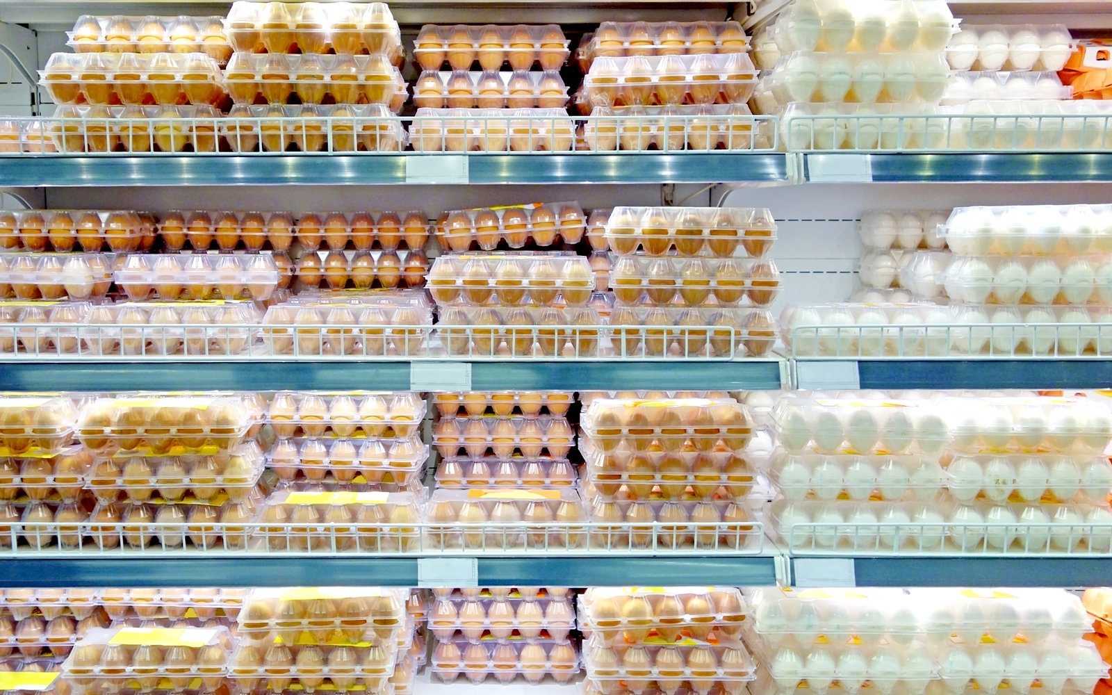 Why We Refrigerate Eggs in the United States and Other Countries Don't