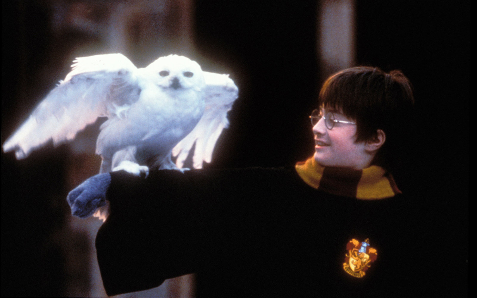 Harry Potter Movies Coming Back to Theaters