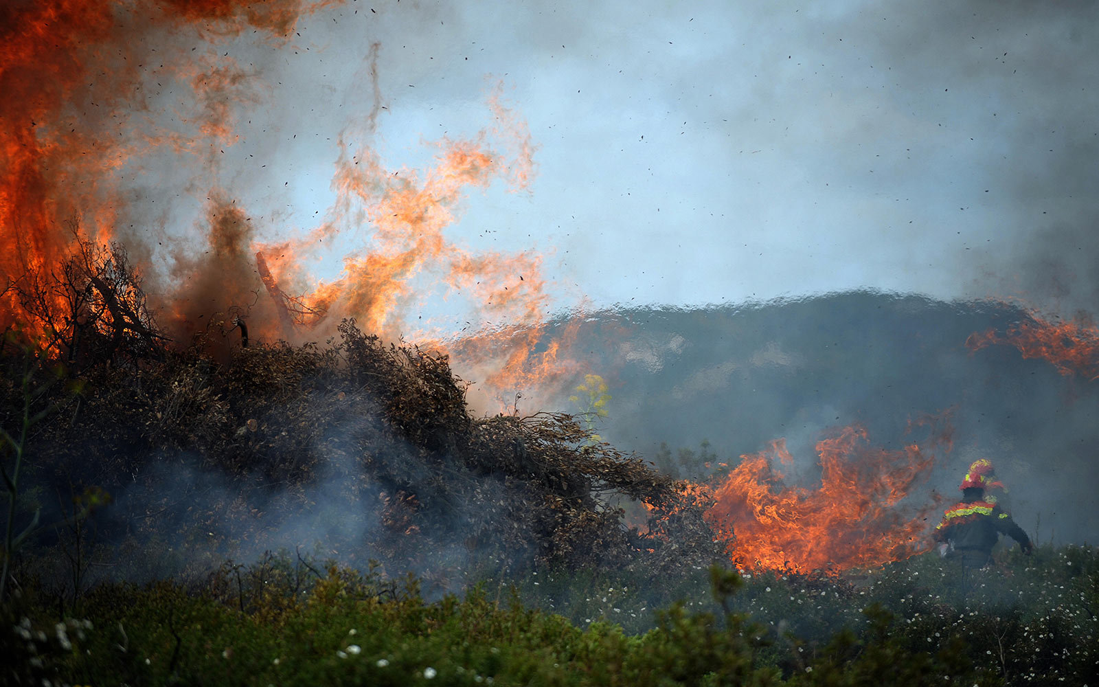 Climate Change Doubled the Size of Forest Fires