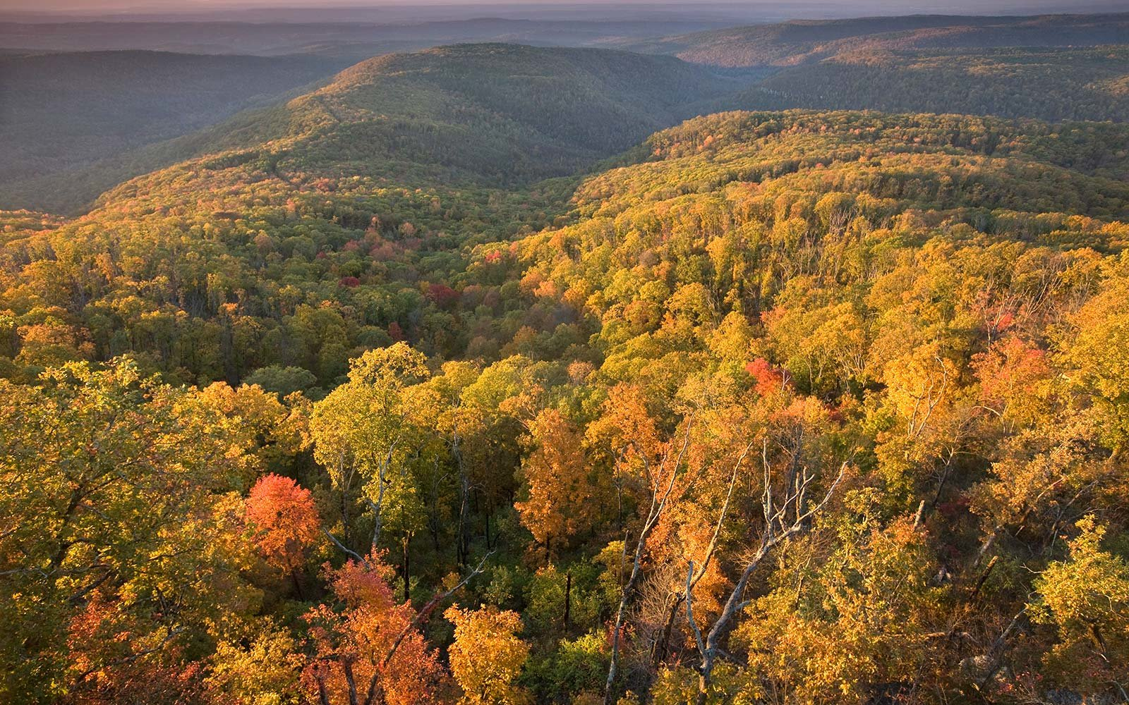 Best Spots for Camping in the Fall