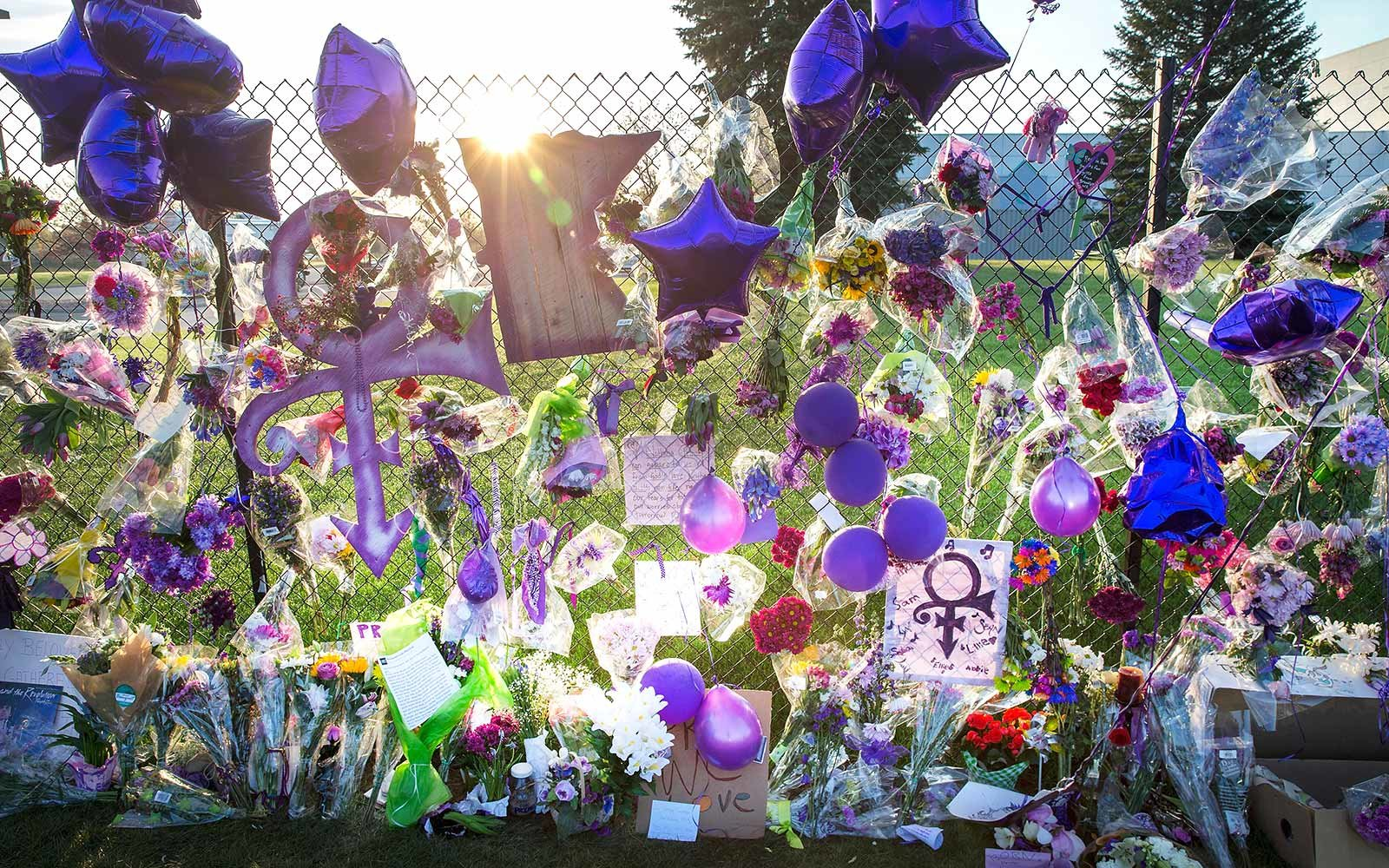Prince's Paisley Park to Open to the Public on Friday