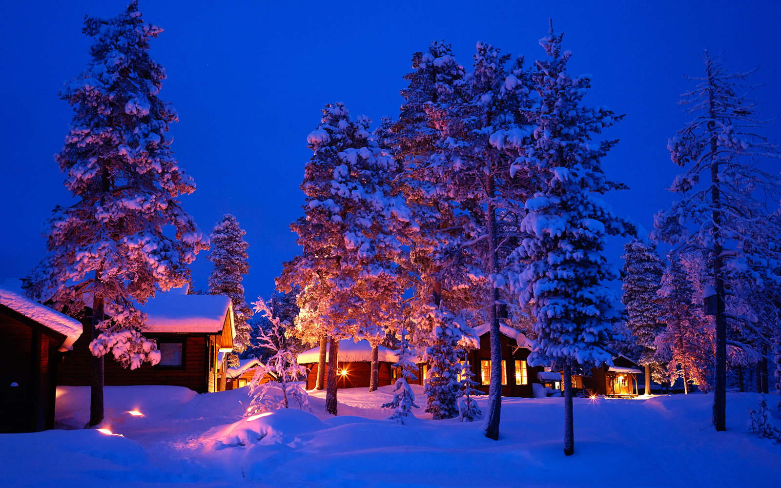 A Winter Escape in Swedish Lapland