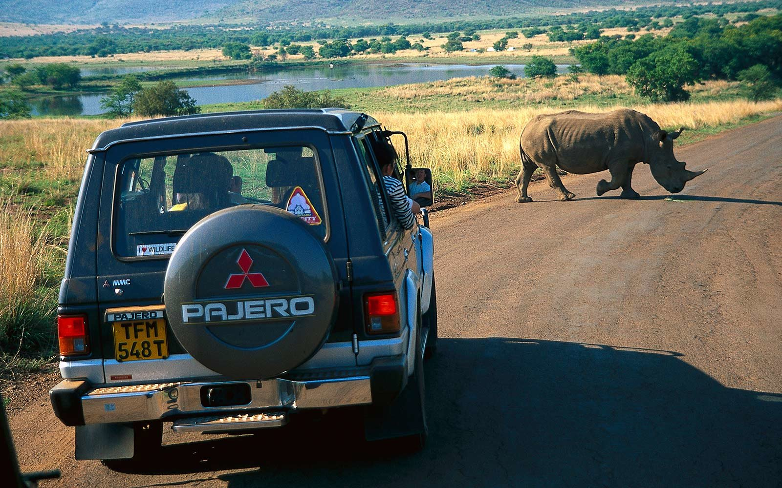 6. Go on a Safari in South Africa