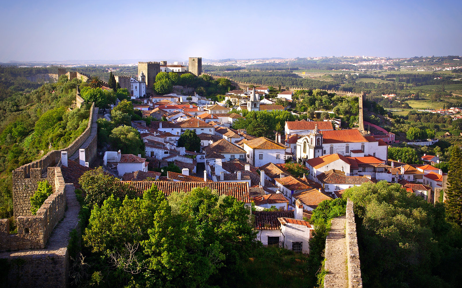 Aerial View of Obidos