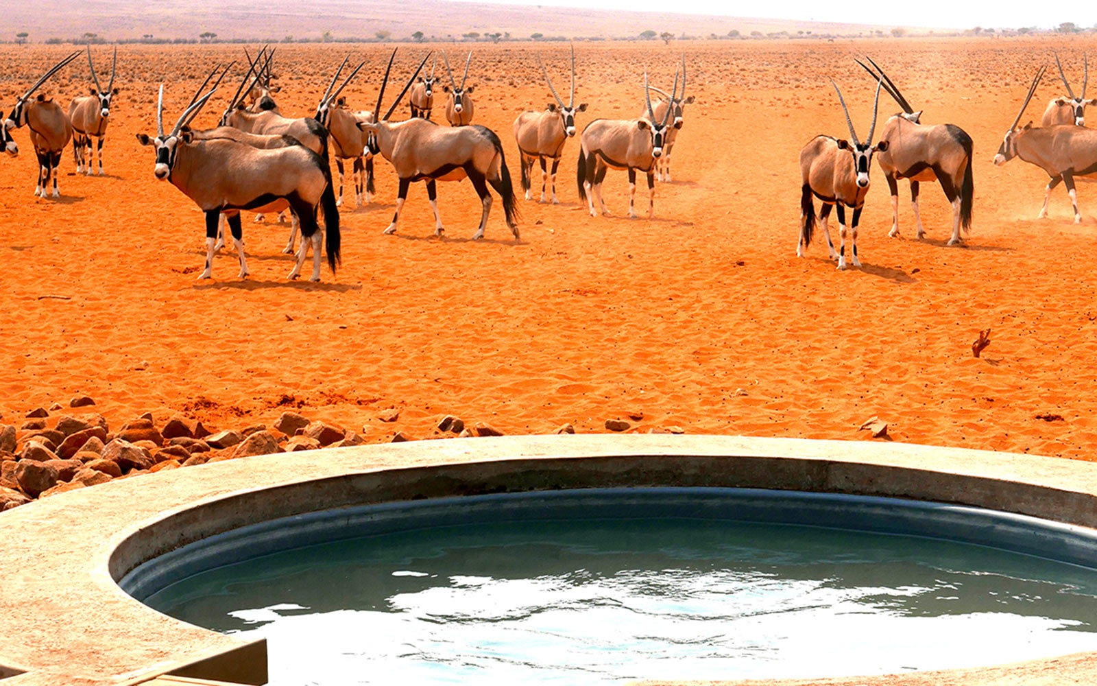 Wolwedans Dune Lodge Namibia Outdoor Tub