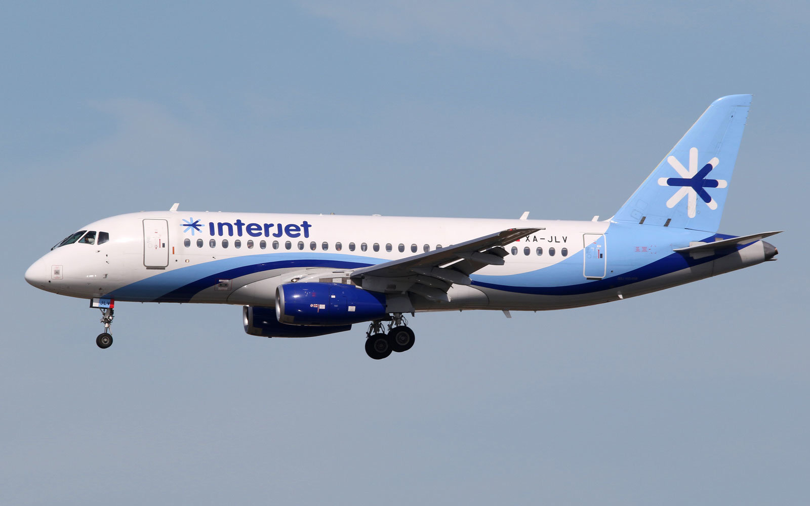 Interjet offered a reward for a lost dog without telling the owner.
