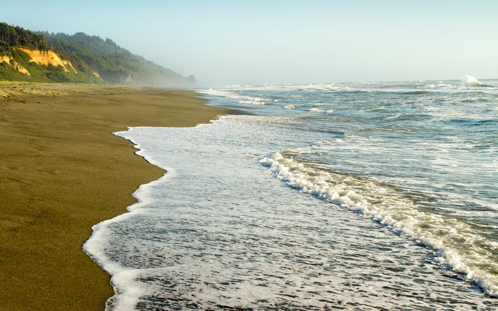 Gold Bluffs Beach, Redwood National Forest, California