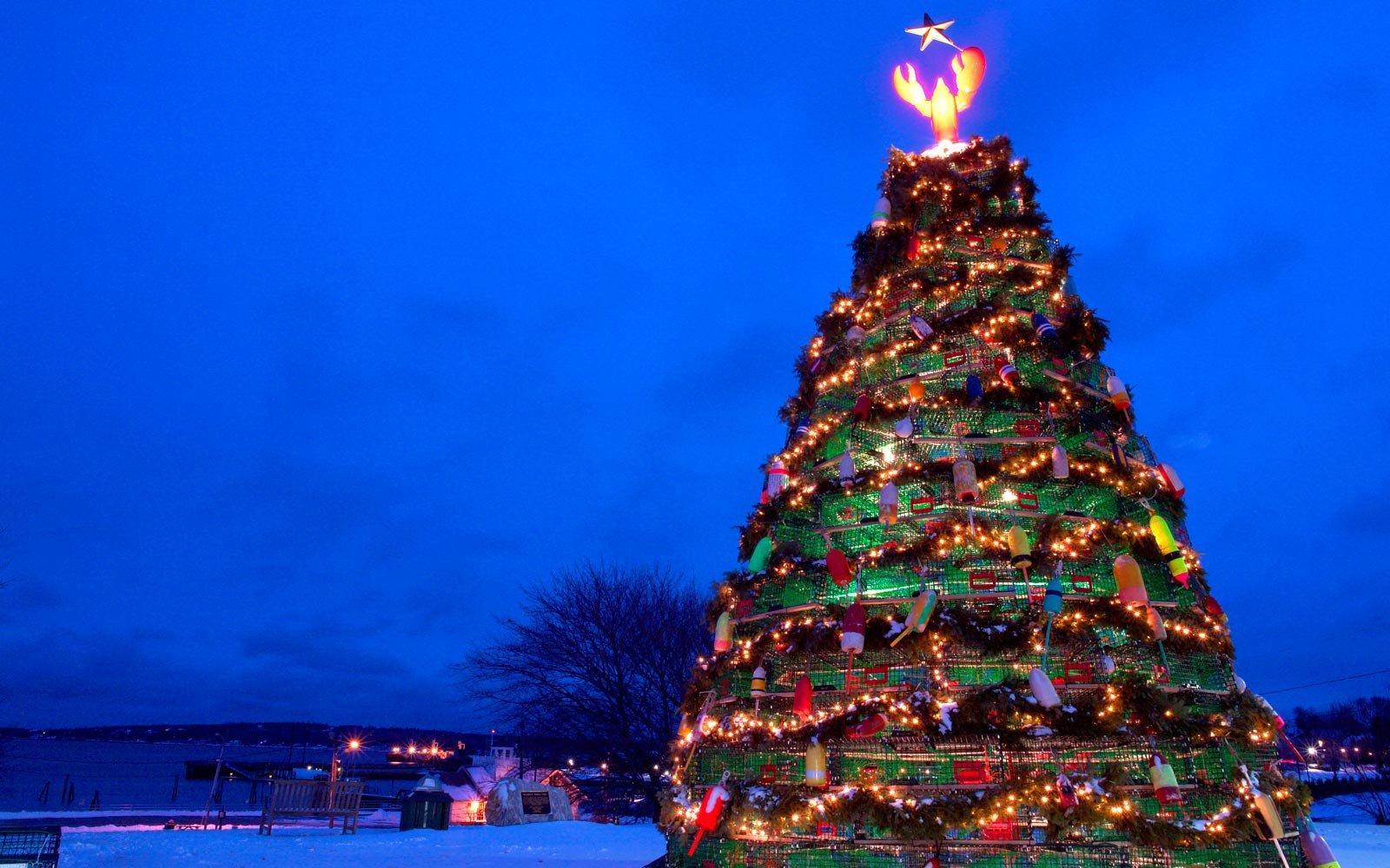 the wackiest christmas trees in the world - Largest Christmas Tree