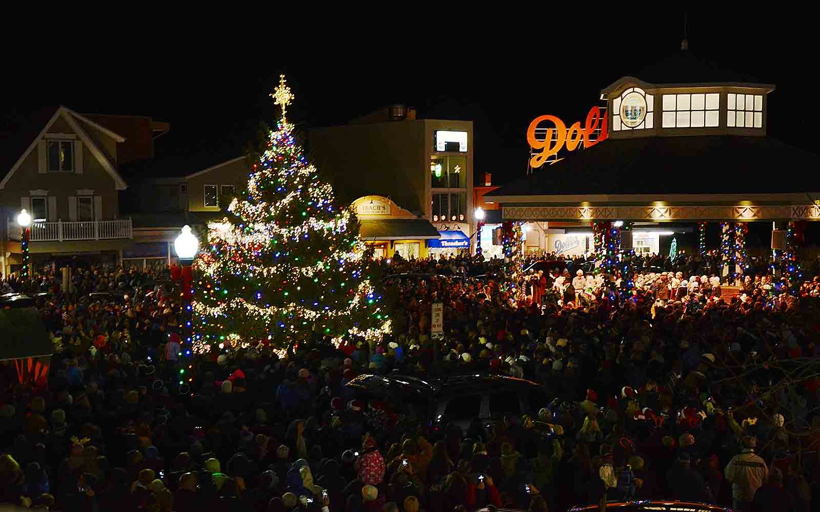The Best Christmas Trees In The United States Travel