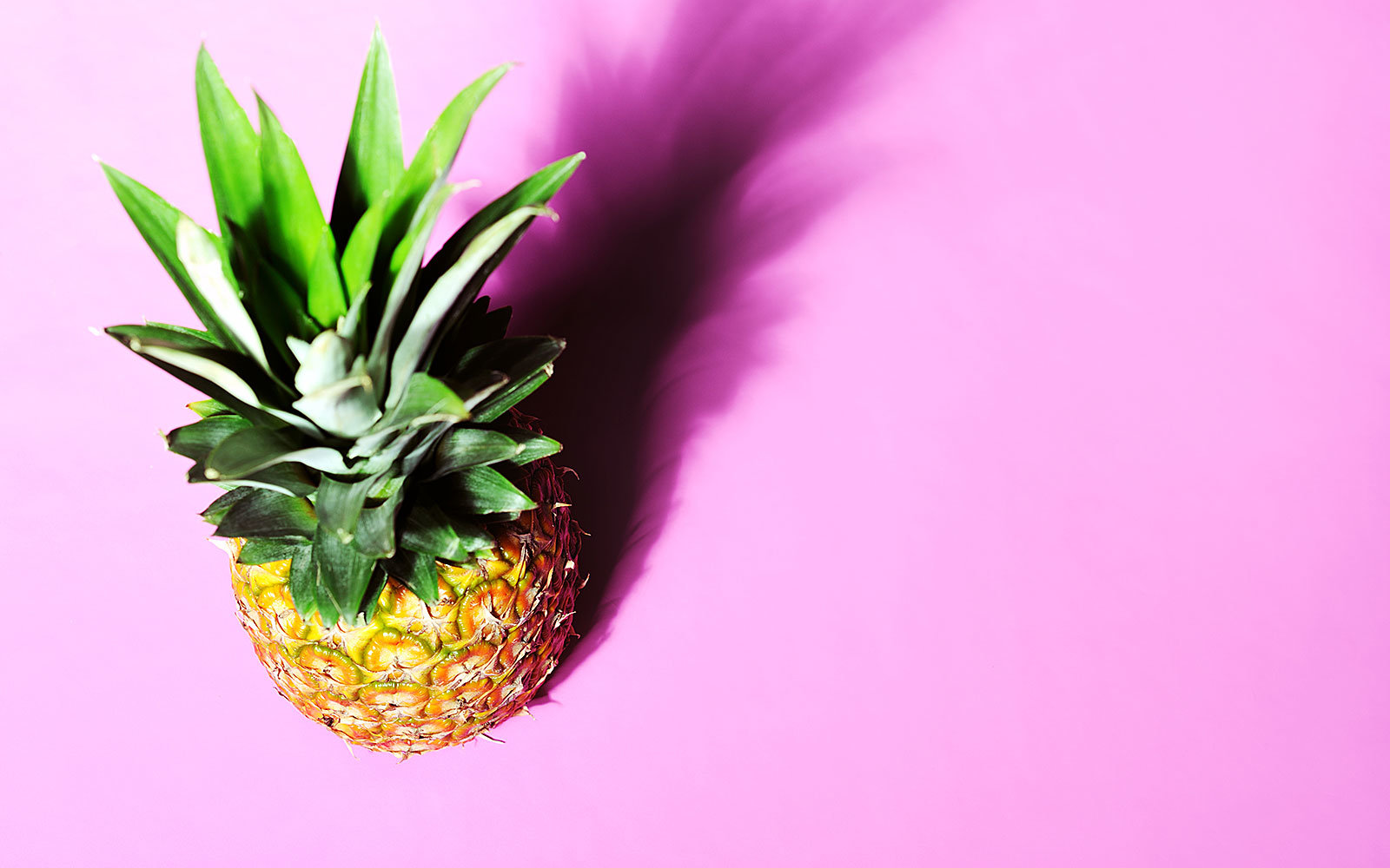 Pink Pineapple GMO