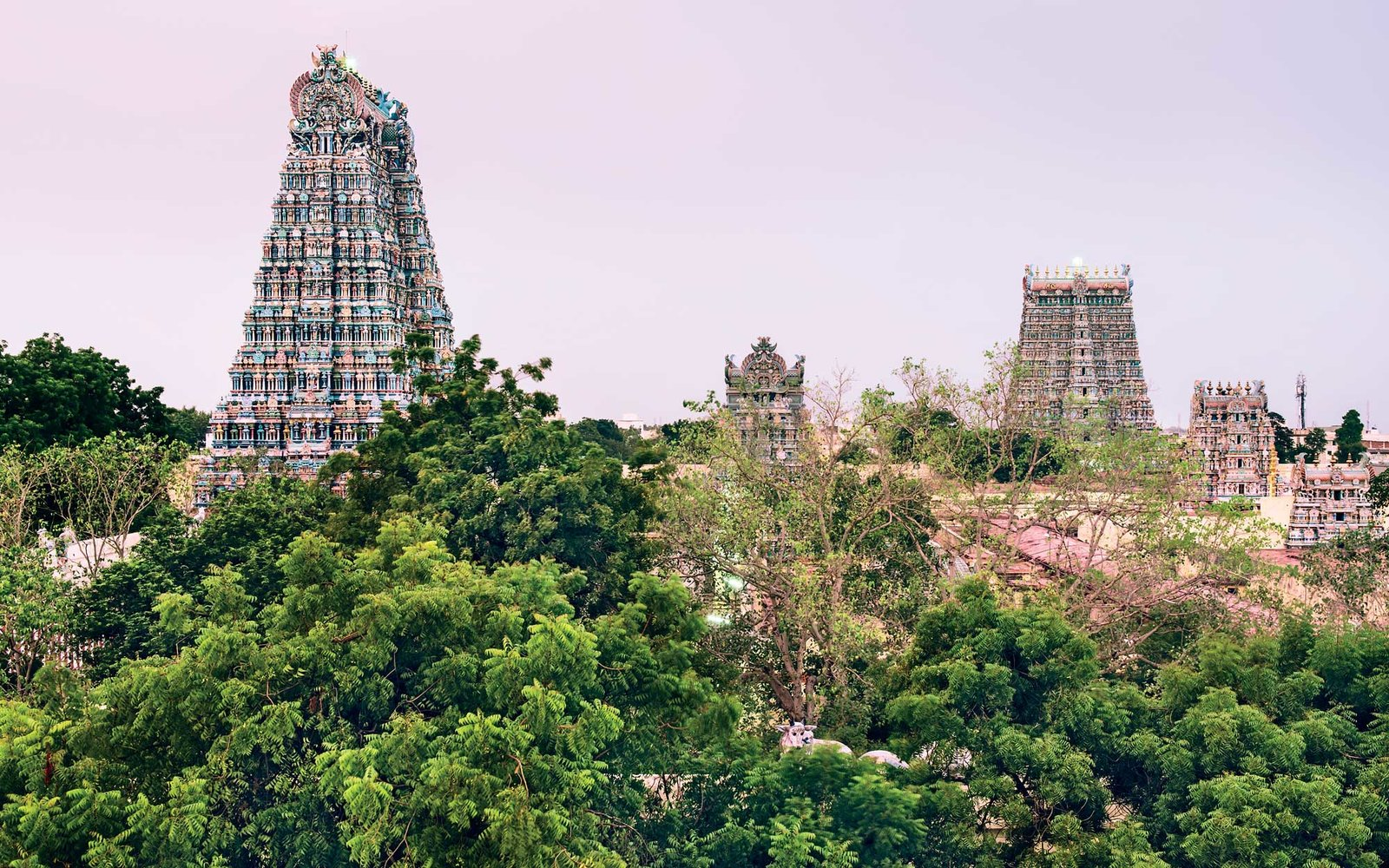 The Spiritual State of Tamil Nadu | Travel + Leisure
