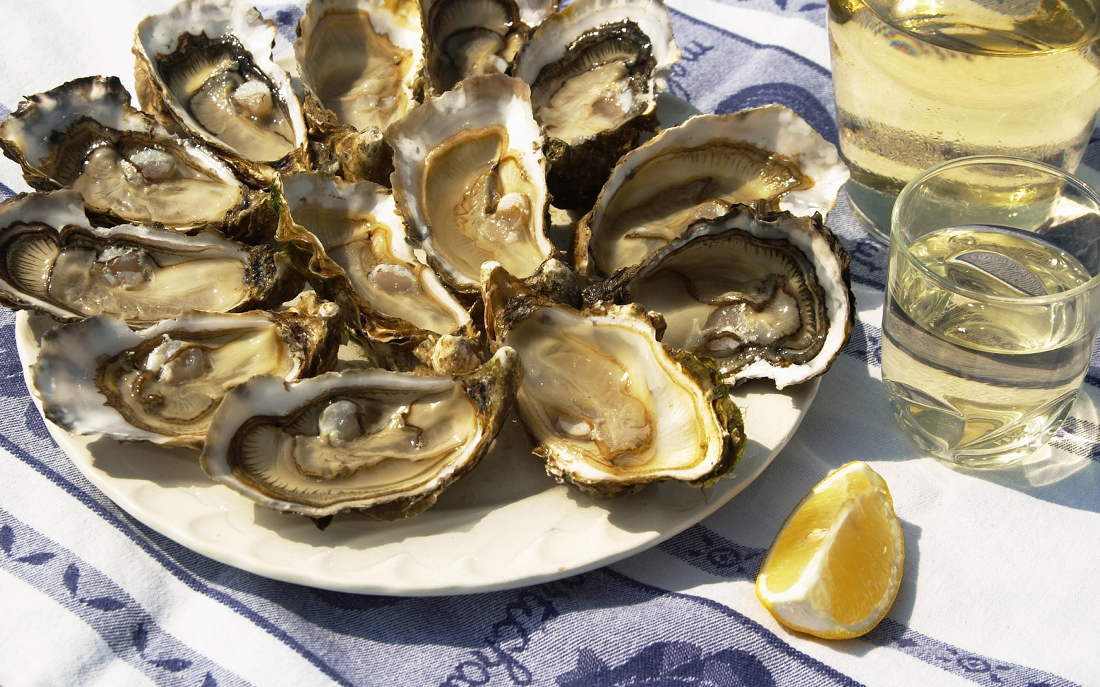 Why Oysters Are Healthy