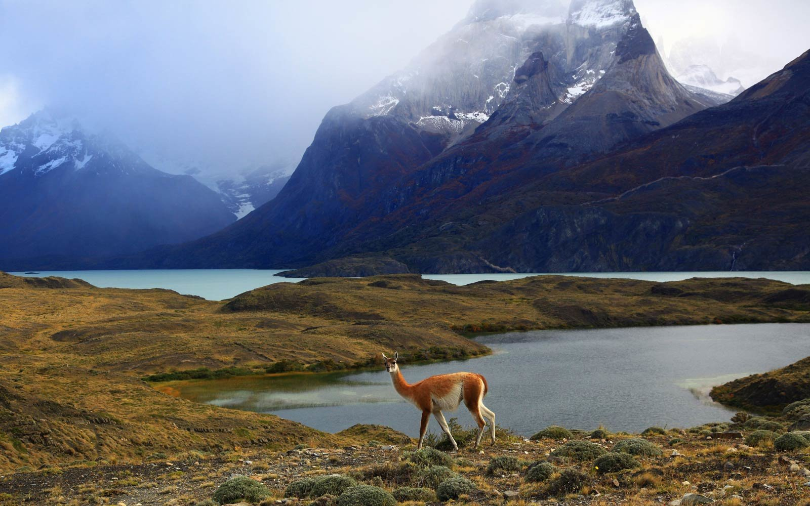 Soak Up the Scenery in Patagonia