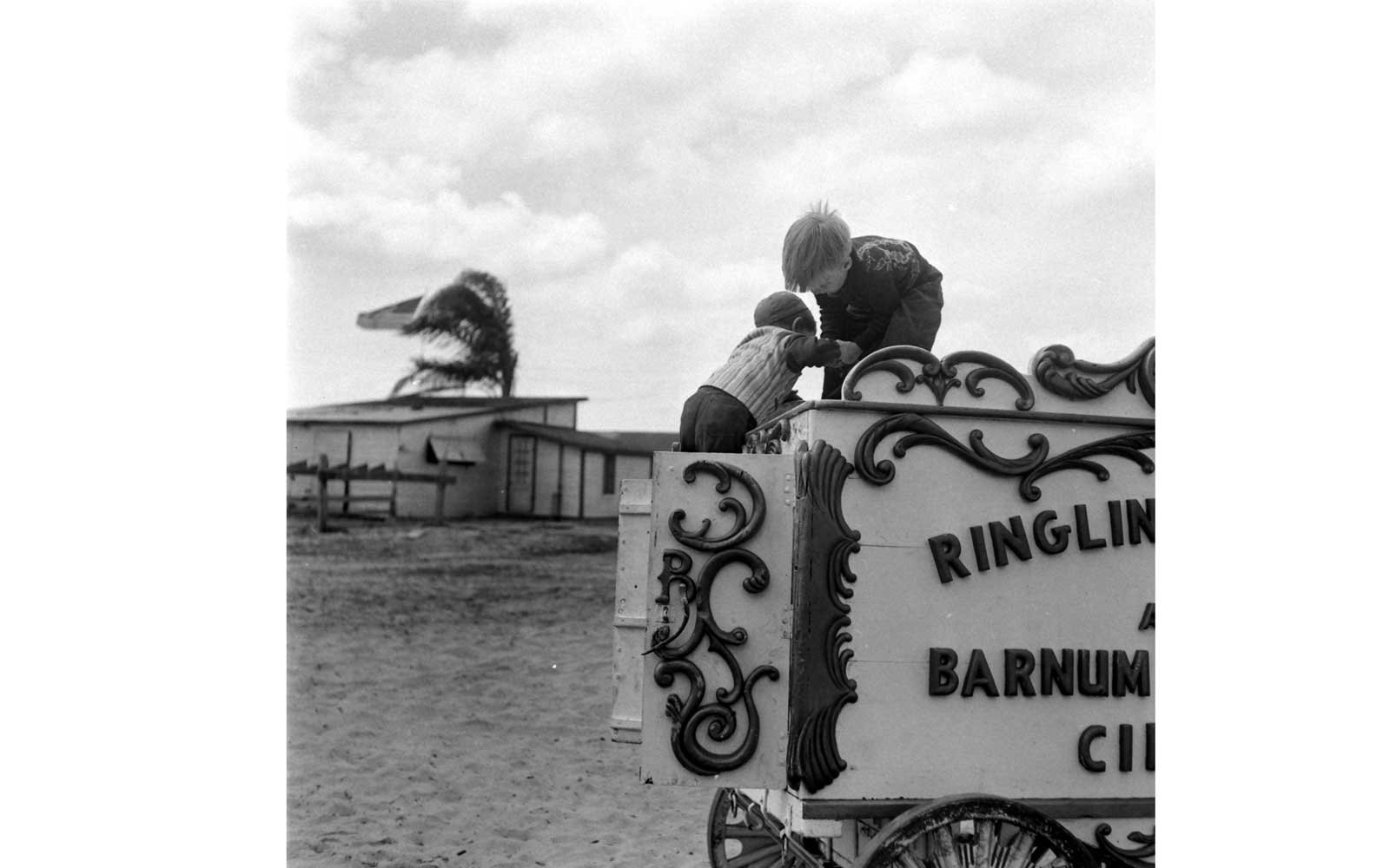 Ringing Brothers Barnum & Bailey