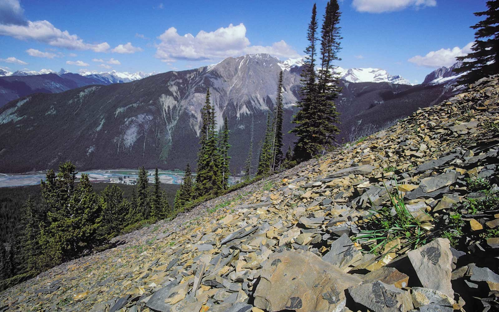 Excavating History in British Columbia