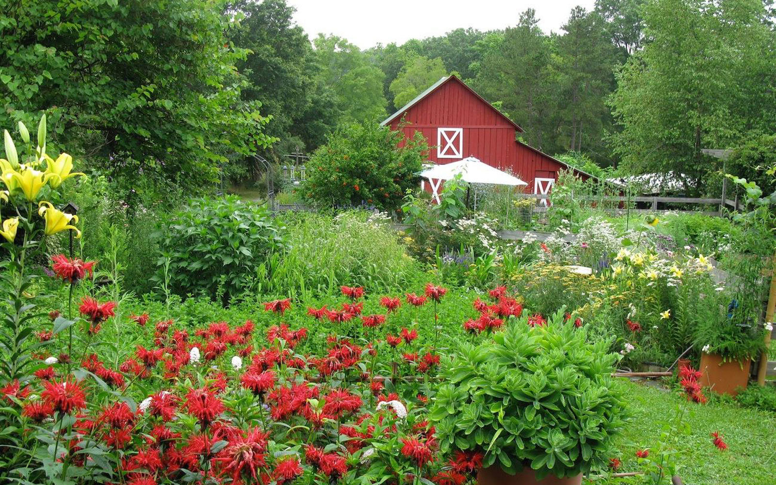 bluebird-hill-farm-barn-FARM217.jpg