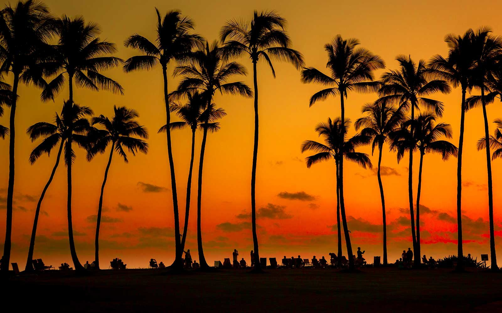 poipu-hawaii-palm-sunset-EXPENSIVE0217.jpg