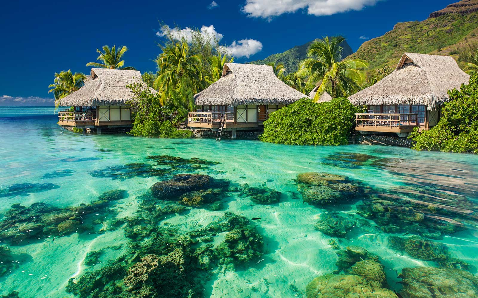 No. 4 Moorea in French Polynesia