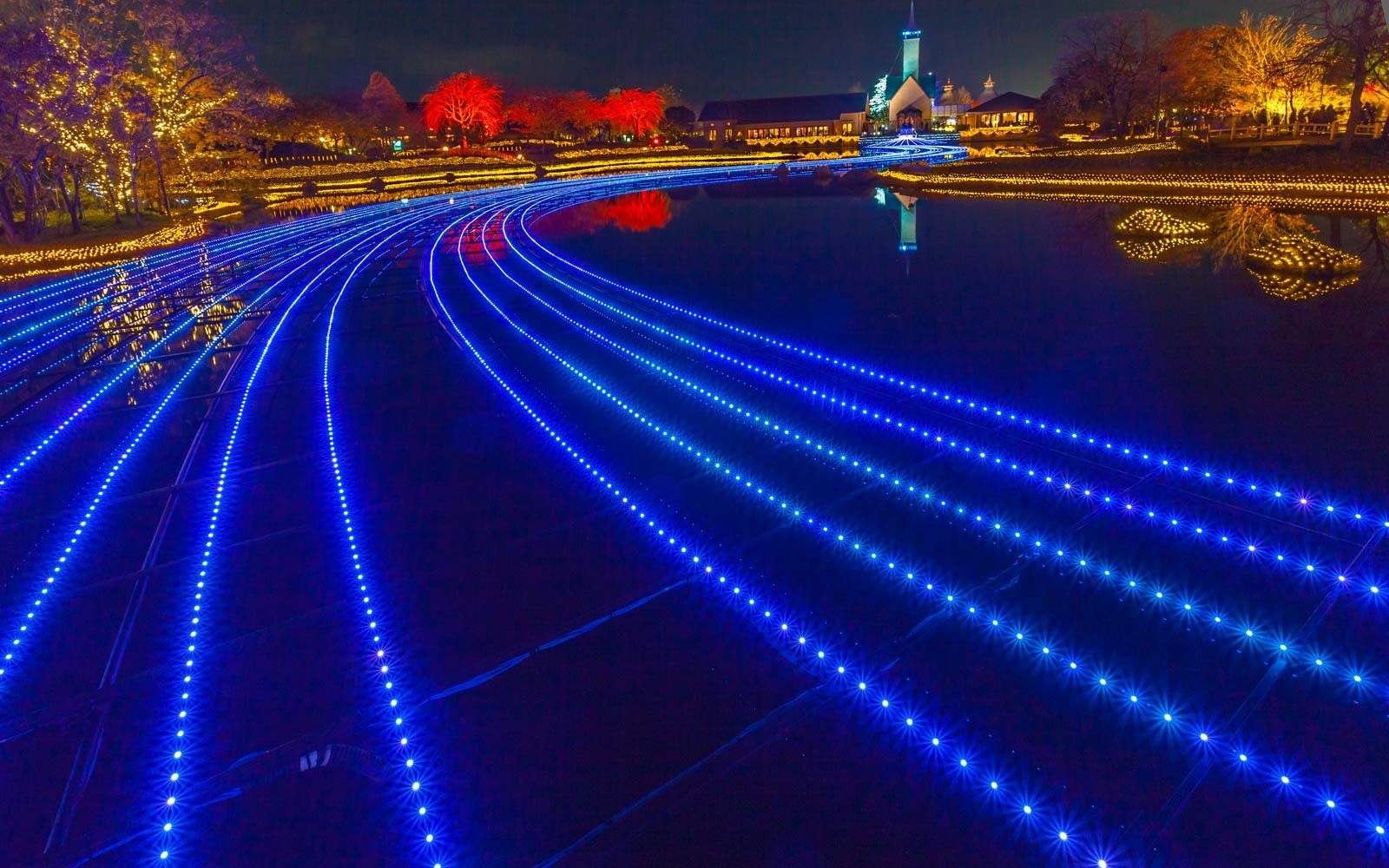 Japanese Light Festival Brings Fall Foliage To Life In The
