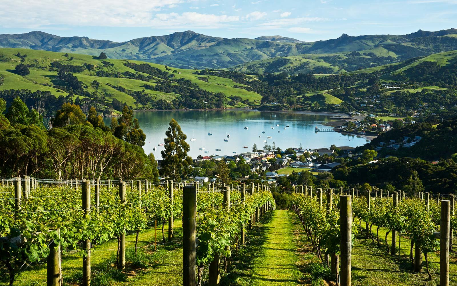 How Oprah, Mindy and Reese Are Exploring New Zealand ...