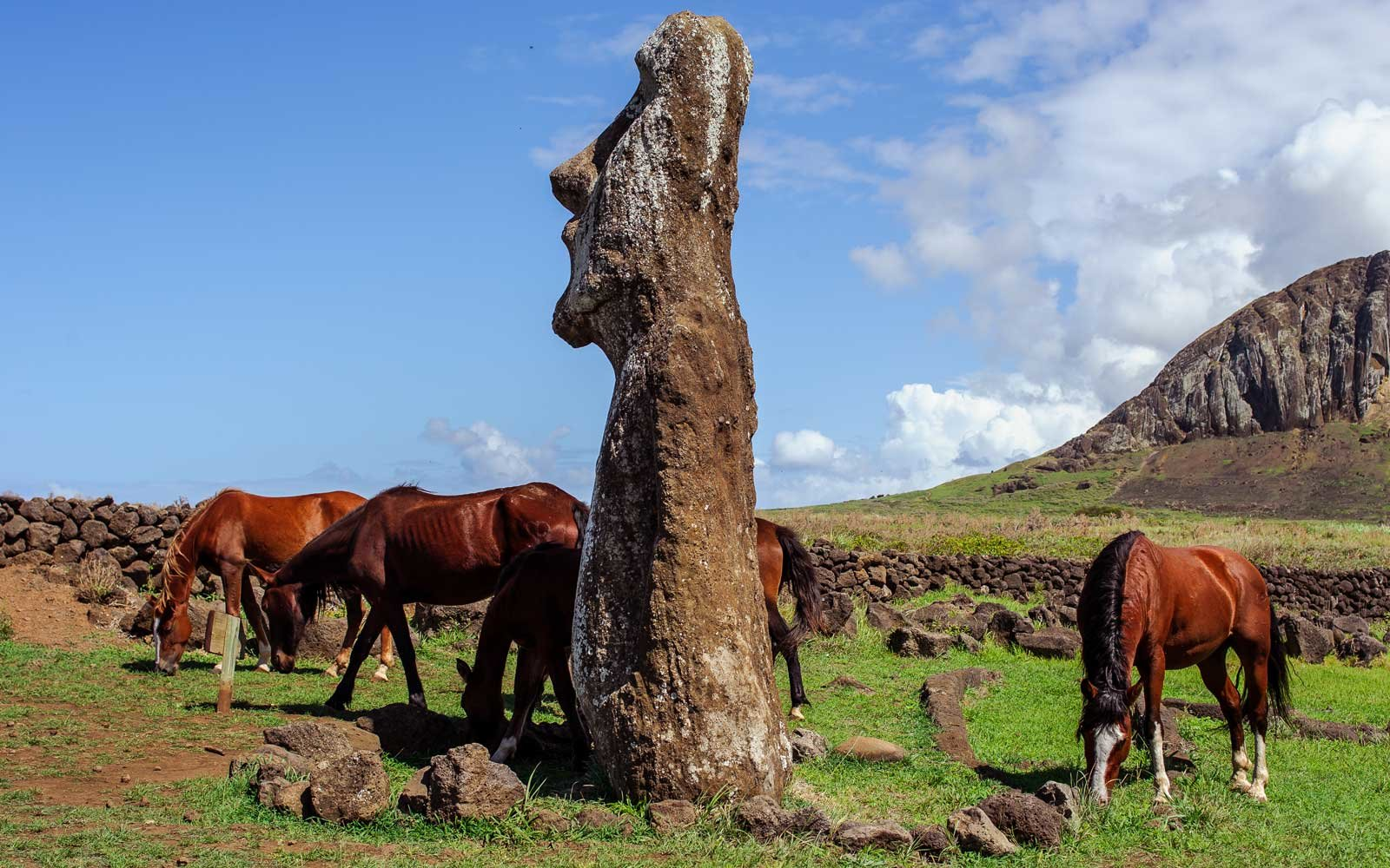 How To Travel To Easter Island Travel Leisure