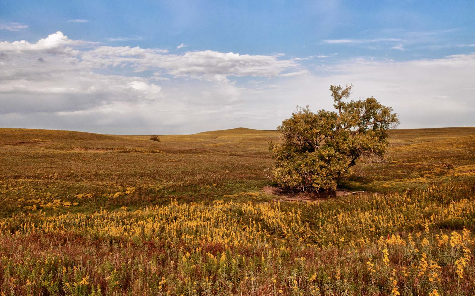 The Flint Hills, Kansas