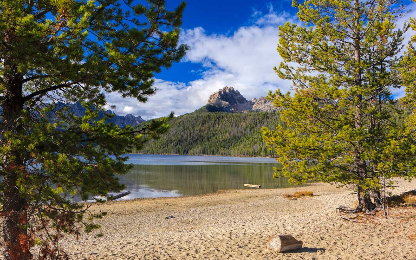 The Best Campsite In Every State Travel Leisure