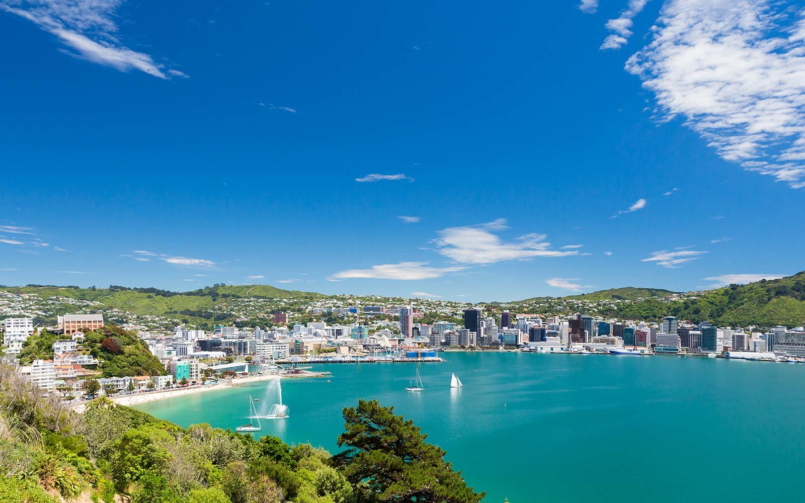 New Zealand will pay for your vacation if you agree to an interview