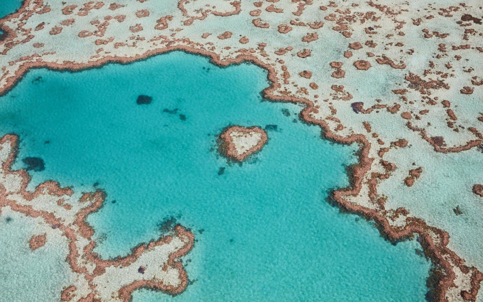 great-barrier-reef-australia-BARREEF0302.jpg
