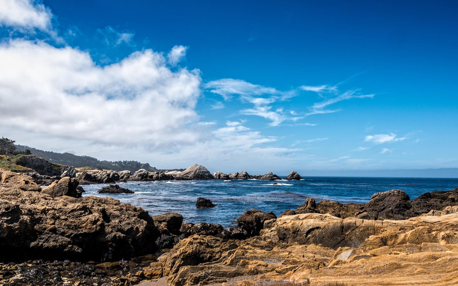 Point Lobos, Carmel Highlands, California