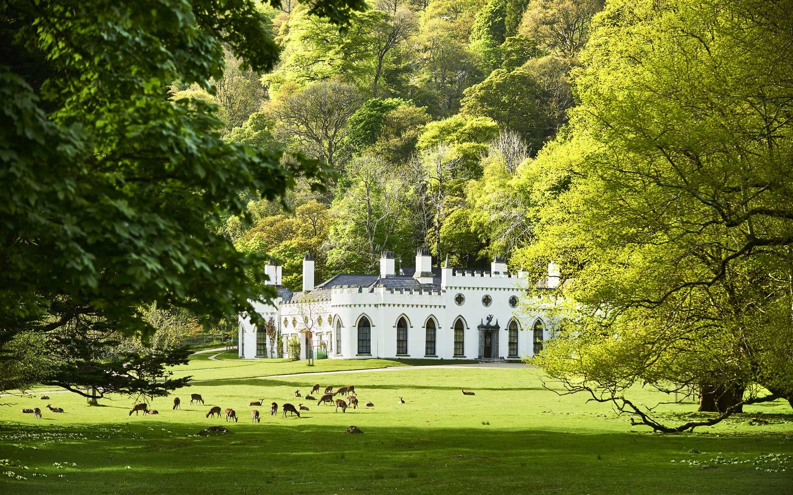 Luggala Beer Castle For Sale