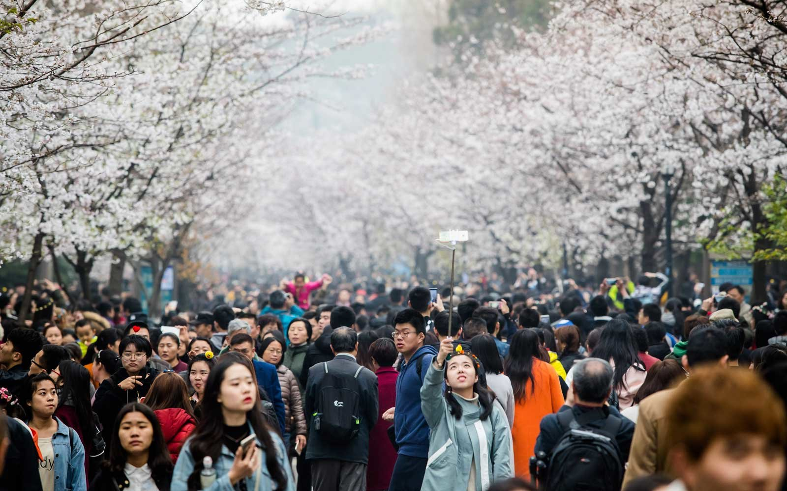 Spring Celebrations Around The World