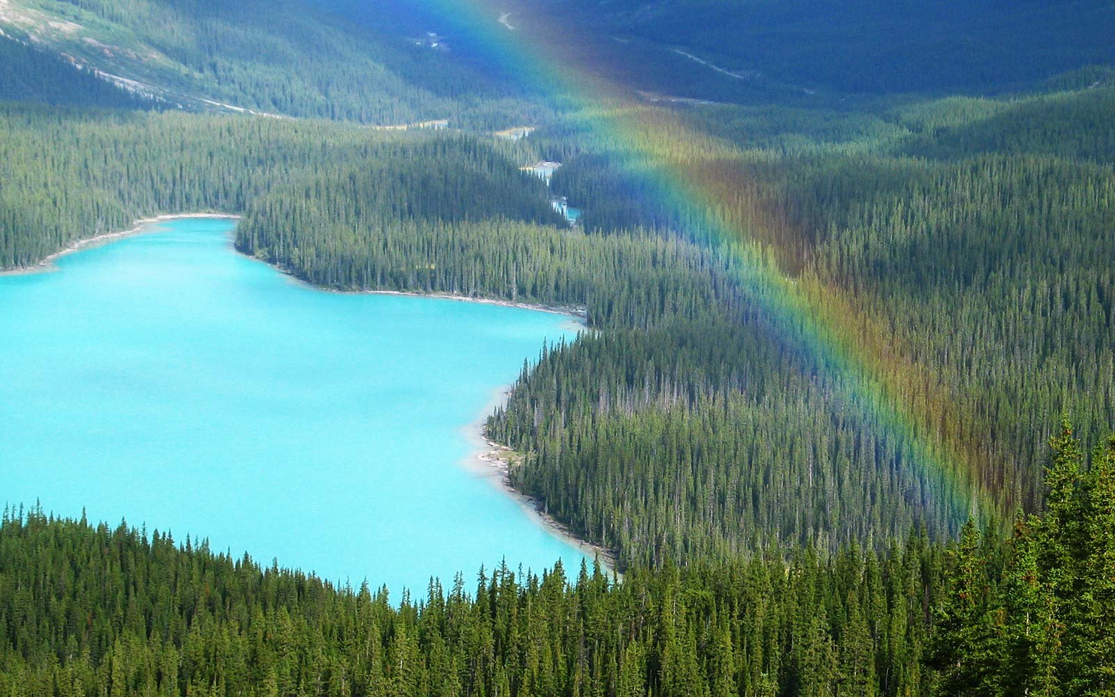 rainbows rainbow nature natural national around getty istockphoto park zoom prove attraction these