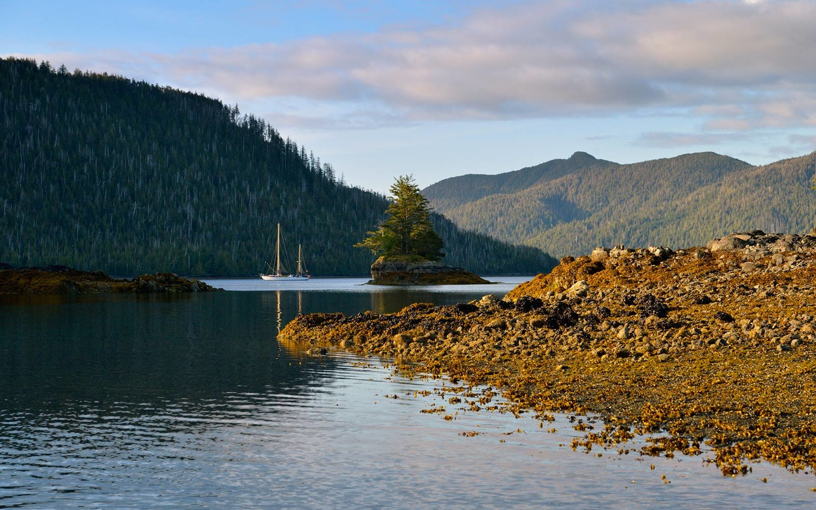 Sailboat, Island Bay, Haida Gwaii, British Columbia, Canada