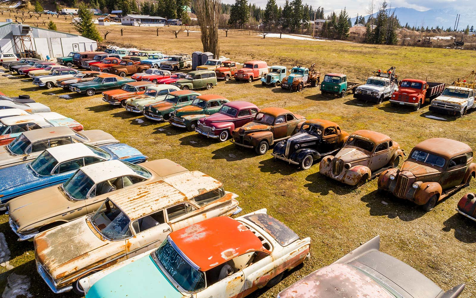 How To Move To Canada And Live In A Vintage Car Cemetery