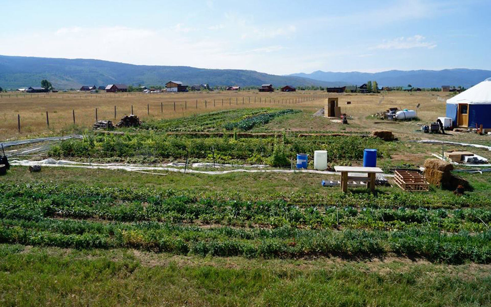 Generation Farms in Victor, Idaho