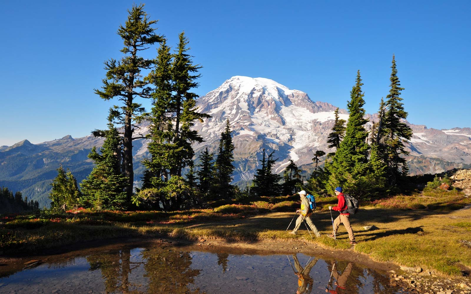 19. Mount Rainier National Park