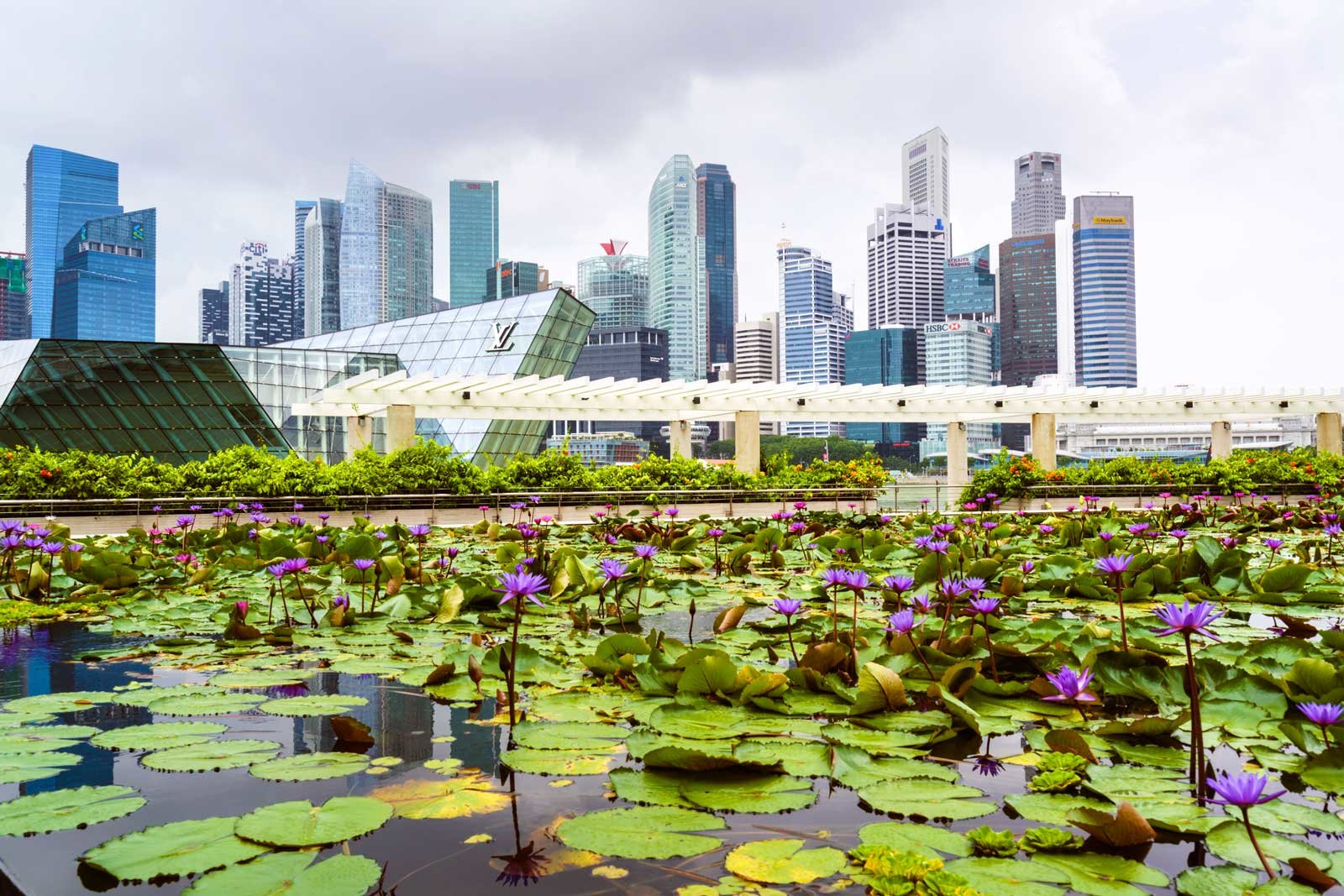 Singapore Flight Deal From London