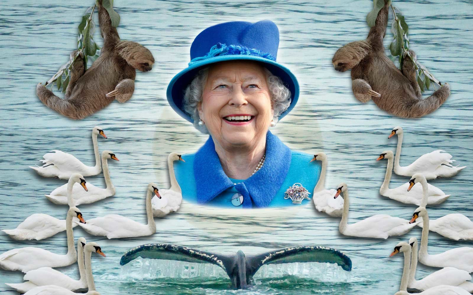 Queen Elizabeth II's Animals