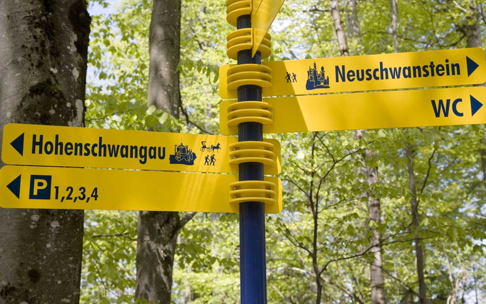 Things to Do Near Neuschwanstein Castle