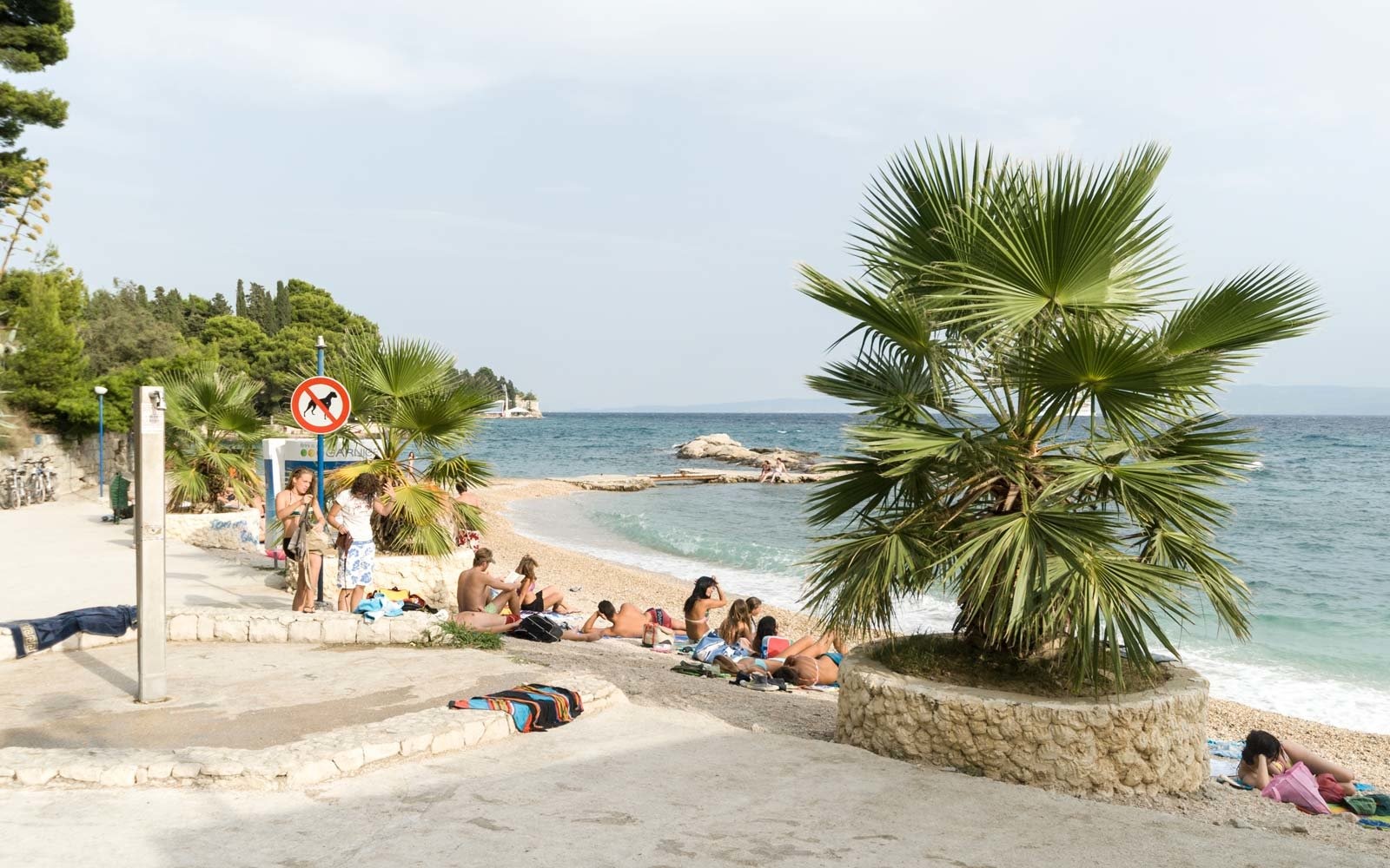 Beach with Palm Trees near Split, Croatia