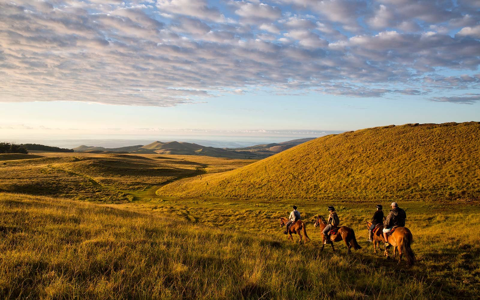 TCS World Travel horseback tour