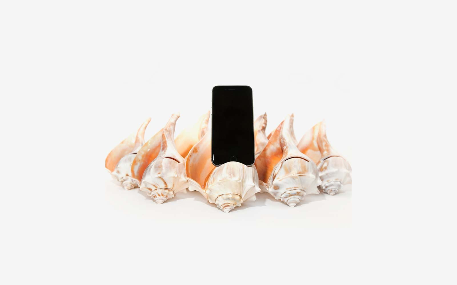Seashell iPhone Speaker
